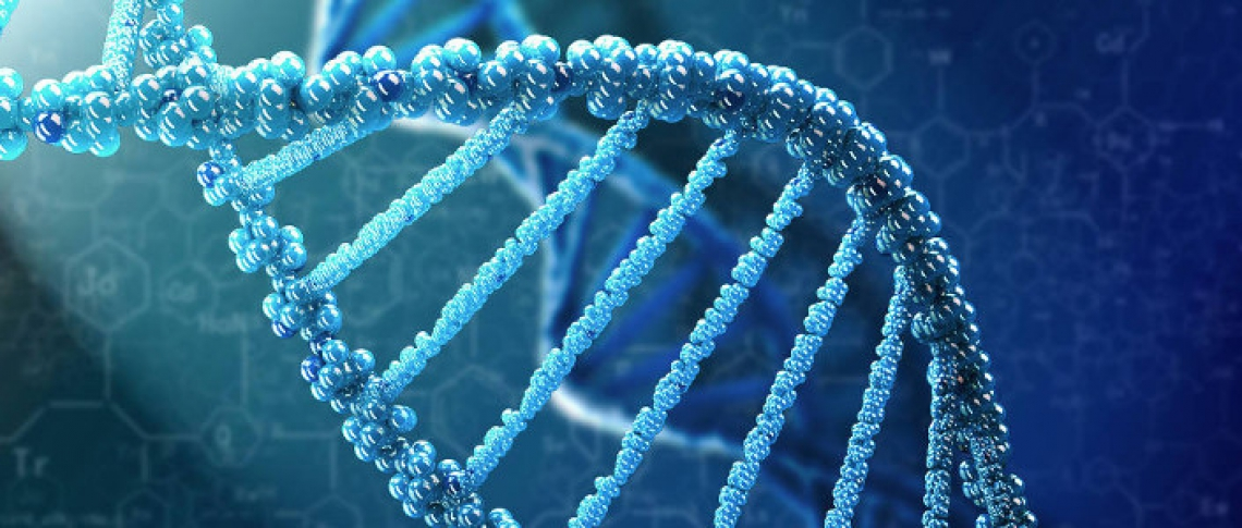 Forensic DNA Services - Interpretation and Identification